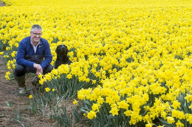 Scottish flower growers unite to promote 'grown not flown'