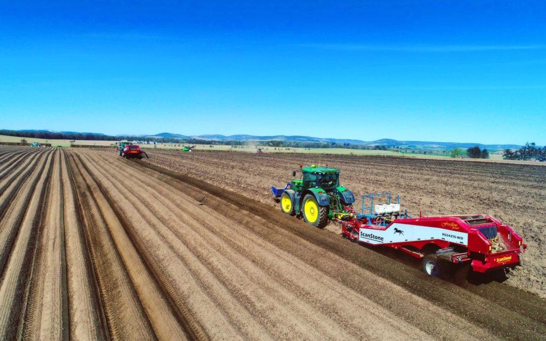 Potato Planting 2020